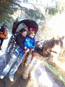 Center Parcs Winfell Forest – Cumbria