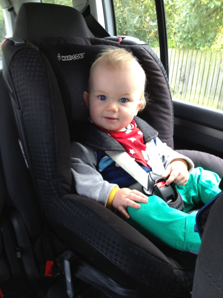 The Obnoxious Car Seat Stage - Common problems - Toby and Roo