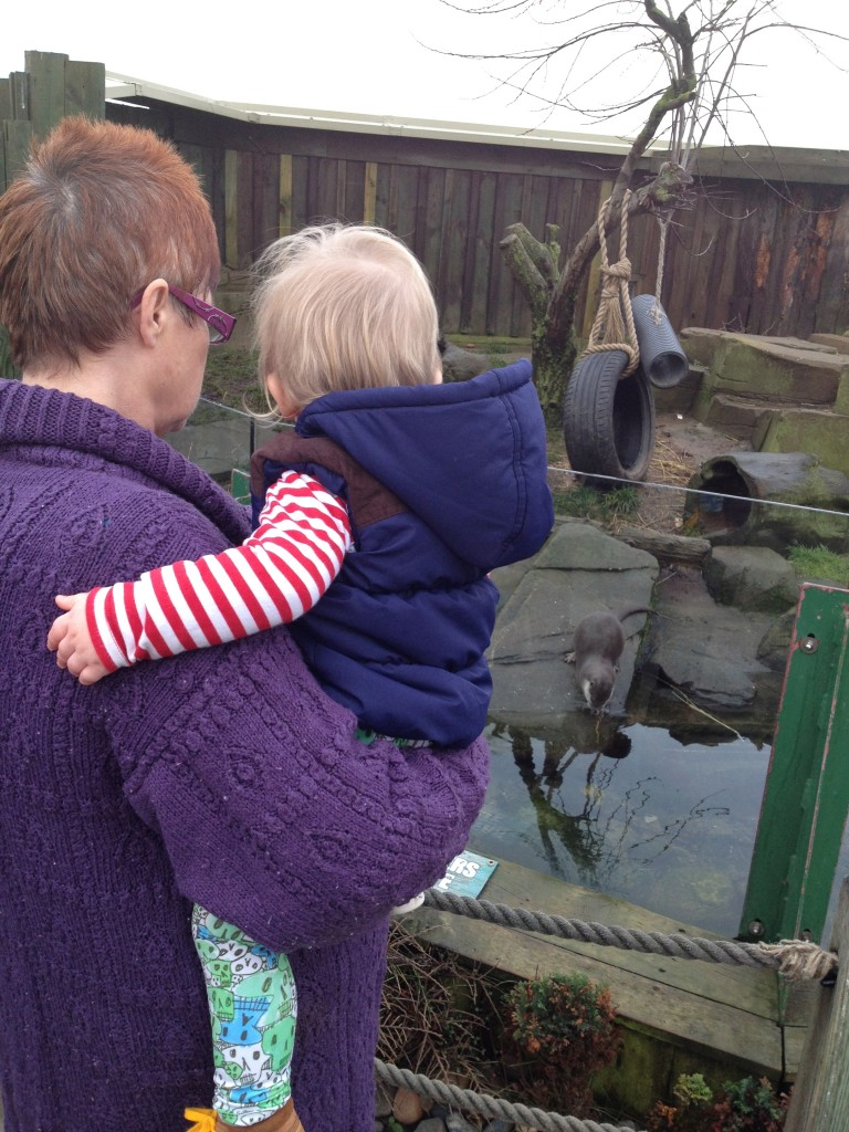 Toby liked the otters best, they were called Eric & Pumpkin - how cute!?