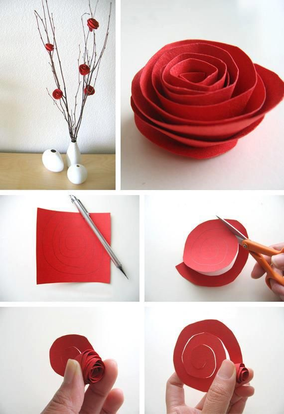 The most simplistic roses!