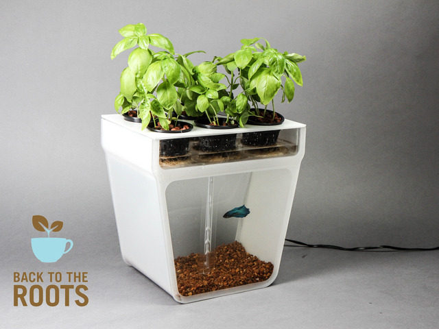 One of the cleverest products I have come across in a while. Aquaponics for the home is something truly awe inspiring!