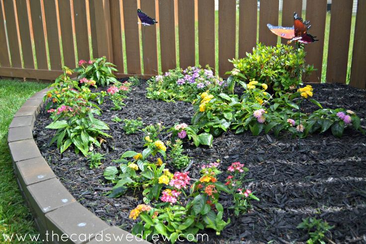 A great way to get kids involved in the garden is to have a beautiful butterfly garden. Kids love starting at butterflies and they are wonderful for your garden too! #gardens #exteriordesign #kids #childrensgardens