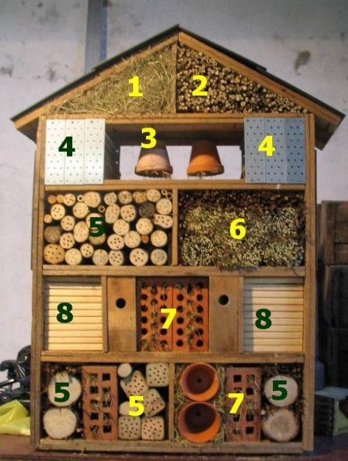 I think this is such a great idea for kids - really a great way to get them learning about nature in the garden!