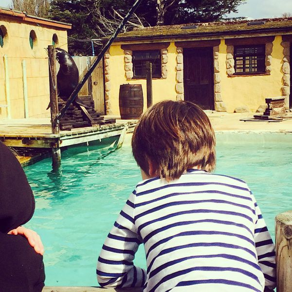 Making the most of zoo trips via Toby & Roo :: daily inspiration for stylish parents and their kids.