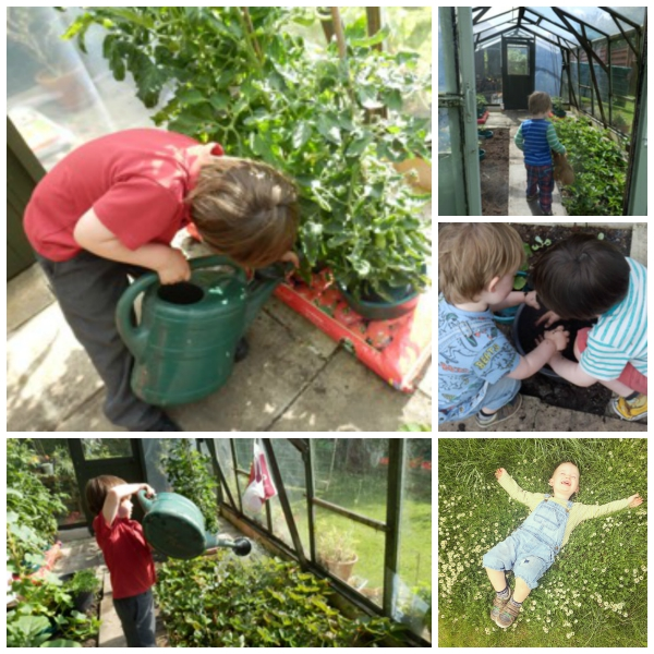 There is something so lovely about watching your children grow their own produce, give it a go and then help them cook something wonderful!