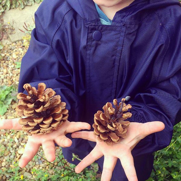 Pine cone Christmas trees :: Autumn crafts for toddlers via Toby & Roo :: daily inspiration for stylish parents and their kids.