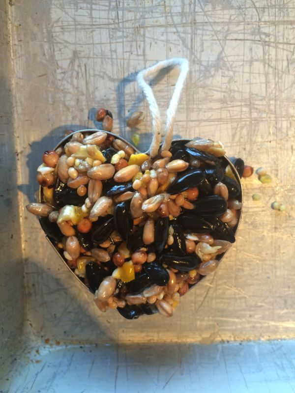 Birdseed heart, the perfect Valentine's Day craft for kids via Toby & Roo :: daily inspiration for stylish parents and their kids.