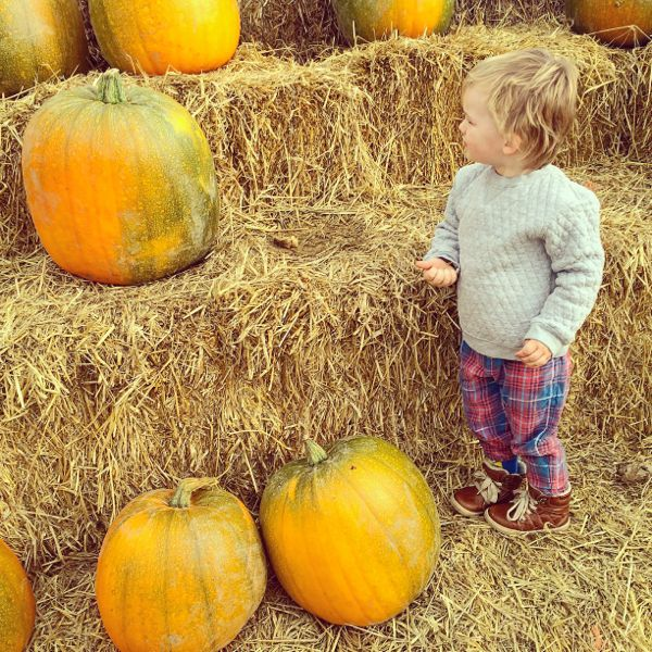 How to pick the best pumpkin for halloween via Toby & Roo :: daily inspiration for stylish parents and their kids.